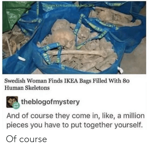 Ikea, Swedish, and Human: atiha Kicka Karke Kinker 2014  Swedish Woman Finds IKEA Bags Filled With 80  Human Skeletons  theblogofmystery  And of course they come in, like, a million  pieces you have to put together yourself. Of course