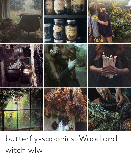 woodland: Atondula  Yedoore  Neo Meon  Tea  Tea butterfly-sapphics:  Woodland witch wlw