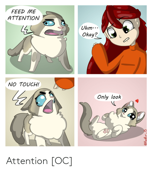 attention: Attention [OC]
