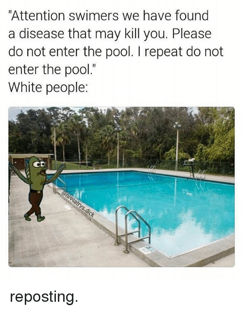 """attentive: """"Attention swimers we have found  a disease that may kill you. Please  do not enter the pool. repeat do not  enter the pool.""""  White people  CD reposting."""
