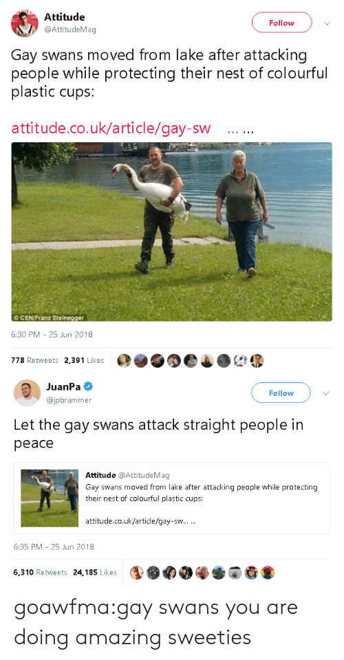 Colourful: Attitude  @AttitudeMag  Follow  Gay swans moved from lake after attacking  people while protecting their nest of colourful  plastic cups:  attitude.co.uk/article/gay-sw  ©CEN/Franz Steinegger  6:30 PM-25 Jun 2018  778 Retweets 2,391 Likes   JuanPa  @jpbrammer  Follow  Let the gay swans attack straight people in  peace  Attitude @AttitudeMag  Gay swans moved from lake after attacking people while protecting  their nest of colourful plastic cups:  attitude.co.uk/article/gay-sw  6:35 PM 25 Jun 2018  6,310 Retweets 24,185 Likes goawfma:gay swans you are doing amazing sweeties