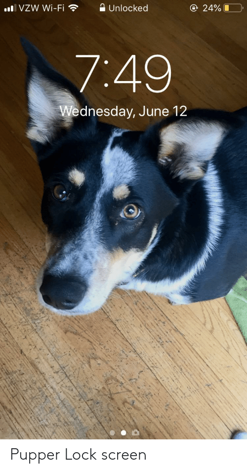Wednesday, Wi-Fi, and Lock: AUnlocked  @ 24%  l VZW Wi-Fi  7:49  Wednesday, June 12 Pupper Lock screen