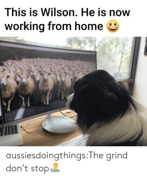 dont: aussiesdoingthings:The grind don't stop👨💻