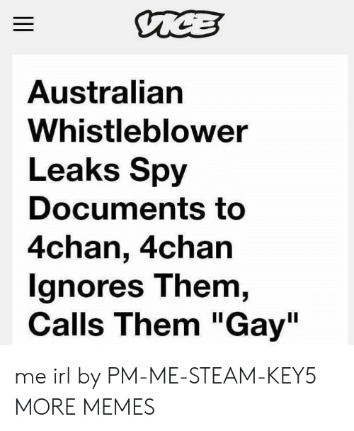 """4chan, Dank, and Memes: Australian  Whistleblower  Leaks Spy  Documents to  4chan, 4chan  gnores T hem,  Calls Them """"Gay"""" me irl by PM-ME-STEAM-KEY5 MORE MEMES"""