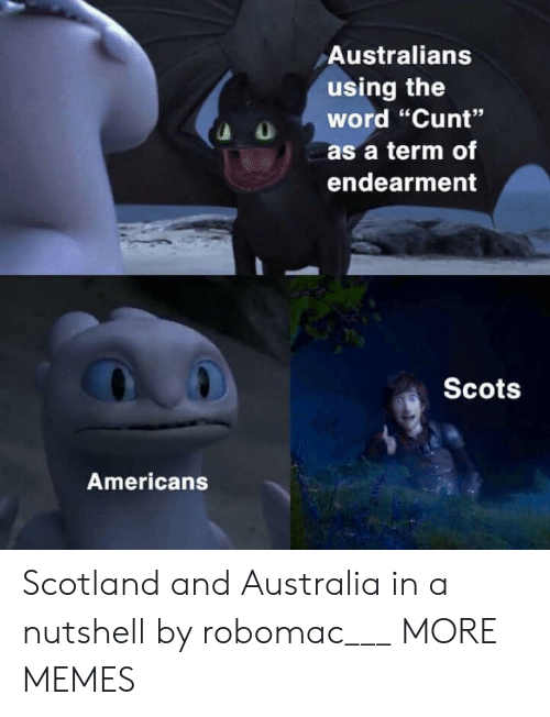 "Scotland: Australians  using the  word ""Cunt""  as a term of  endearment  Scots  Americans Scotland and Australia in a nutshell by robomac___ MORE MEMES"