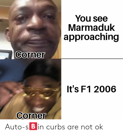 Are Not: Auto-s🅱️in curbs are not ok