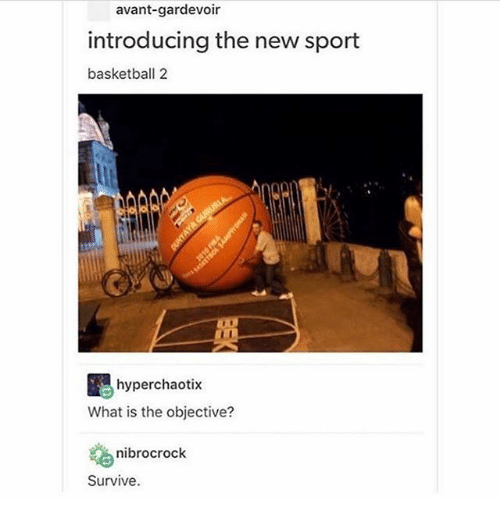 Basketball, Ironic, and What Is: avant-gardevoir  introducing the new sport  basketball 2  hyperchaotix  What is the objective?  nibrocrock  Survive.