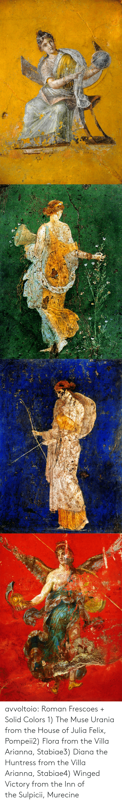 House: avvoltoio: Roman Frescoes + Solid Colors 1) The Muse Urania from the House of Julia Felix, Pompeii2) Flora from the Villa Arianna, Stabiae3) Diana the Huntress from the Villa Arianna, Stabiae4) Winged Victory from the Inn of the Sulpicii, Murecine