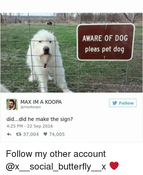 Memes, Butterfly, and 🤖: AWARE OF DOG  pleas pet dog  MAX IM A KOOPA  @meakoopa  Follow  did...did he make the sign?  4:25 PM 22 Sep 2016  37,004 74,005 Follow my other account @x__social_butterfly__x ❤️