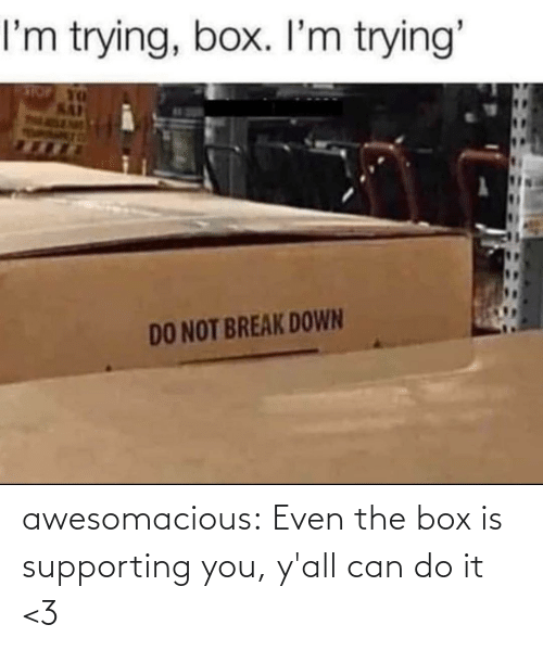 yall: awesomacious:  Even the box is supporting you, y'all can do it <3