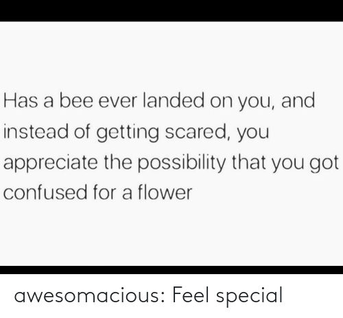 special: awesomacious:  Feel special
