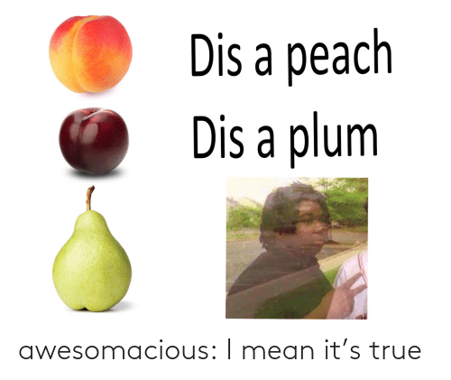 True: awesomacious:  I mean it's true