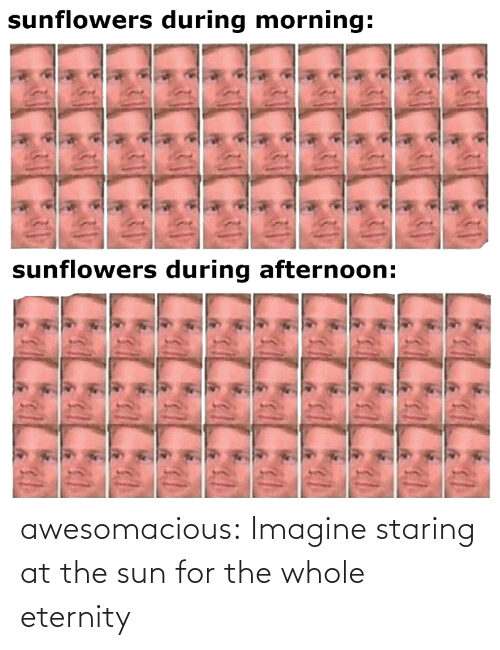 for: awesomacious:  Imagine staring at the sun for the whole eternity