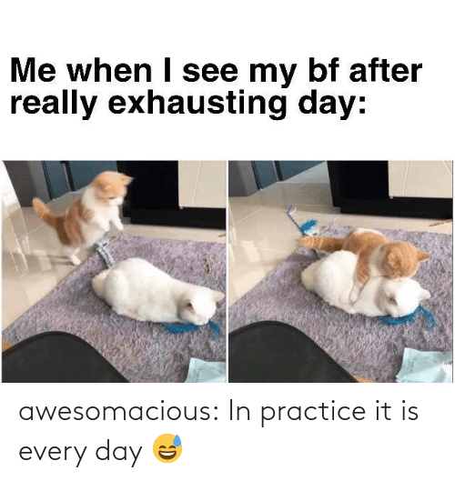 every day: awesomacious:  In practice it is every day 😅