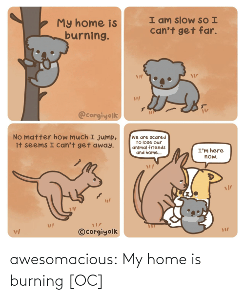 burning: awesomacious:  My home is burning [OC]