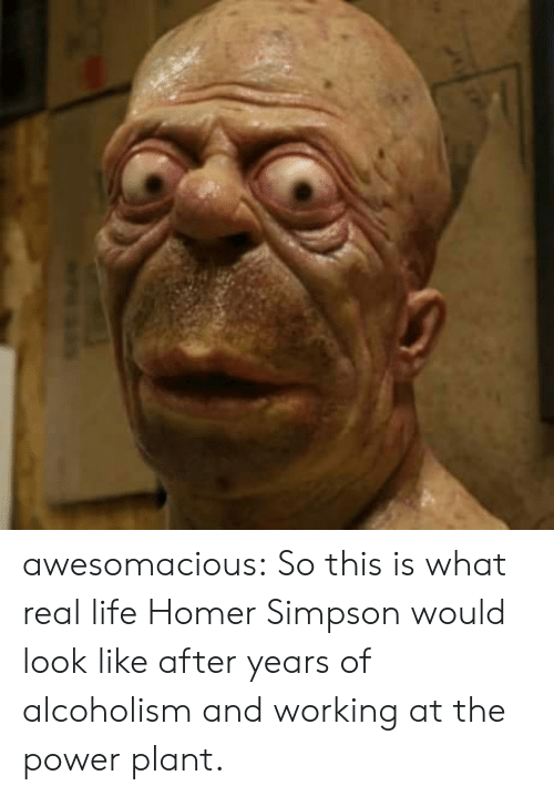 Homer Simpson: awesomacious:  So this is what real life Homer Simpson would look like after years of alcoholism and working at the power plant.