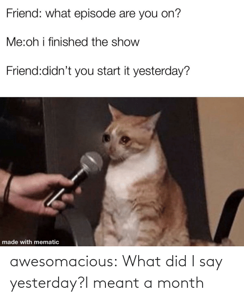 yesterday: awesomacious:  What did I say yesterday?I meant a month