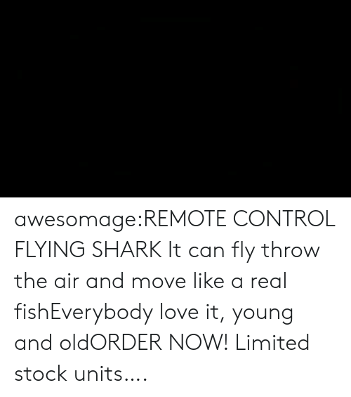 inflatable: awesomage:REMOTE CONTROL FLYING SHARK It can fly throw the air and move like a real fishEverybody love it, young and oldORDER NOW! Limited stock units….