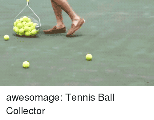 Tumblr, Blog, and Tennis: awesomage:  Tennis Ball Collector