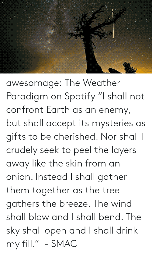 "accept: awesomage:   The Weather Paradigm on Spotify   ""I shall not confront Earth as an enemy, but shall accept its mysteries as gifts to be cherished. Nor shall I crudely seek to peel the layers away like the skin from an onion. Instead I shall gather them together as the tree gathers the breeze. The wind shall blow and I shall bend. The sky shall open and I shall drink my fill.""  - SMAC"