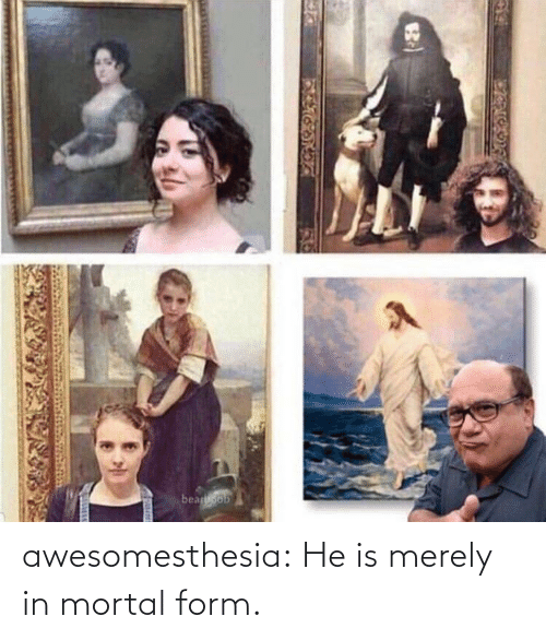 merely: awesomesthesia:  He is merely in mortal form.