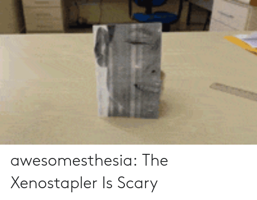 Tumblr, Blog, and Http: awesomesthesia:  The Xenostapler Is Scary