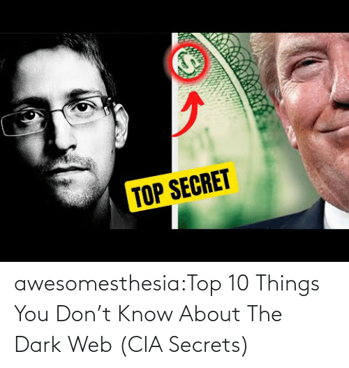 About The: awesomesthesia:Top 10 Things You Don't Know About The Dark Web (CIA Secrets)
