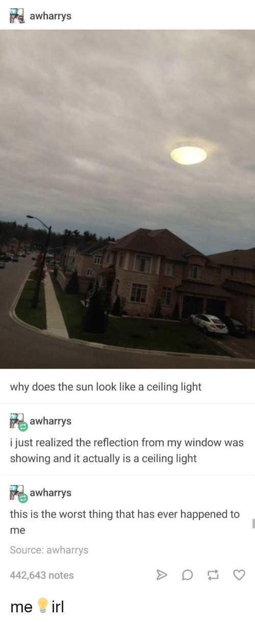 This Is The Worst: awharrys  why does the sun look like a ceiling light  awharrys  i just realized the reflection from my window was  showing and it actually is a ceiling light  awharrys  this is the worst thing that has ever happened to  me  Source: awharrys  442,643 notes me💡irl