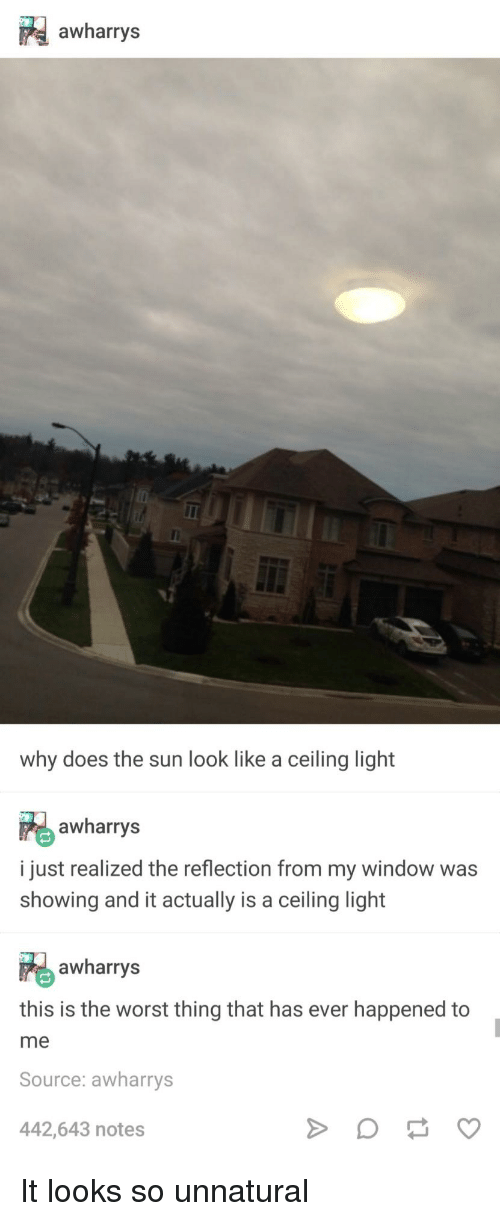This Is The Worst: awharrys  why does the sun look like a ceiling light  awharrys  i just realized the reflection from my window was  showing and it actually is a ceiling light  awharrys  this is the worst thing that has ever happened to  me  Source: awharrys  442,643 notes It looks so unnatural