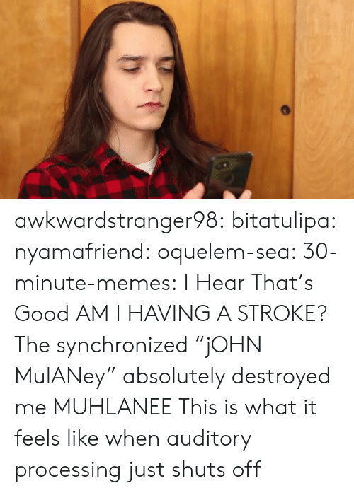"""Memes, Tumblr, and Blog: awkwardstranger98: bitatulipa:  nyamafriend:   oquelem-sea:  30-minute-memes: I Hear That's Good  AM I HAVING A STROKE?  The synchronized""""jOHN MulANey"""" absolutely destroyed me   MUHLANEE   This is what it feels like when auditory processing just shuts off"""