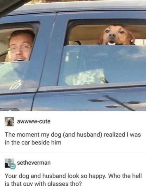 Cute, Happy, and Husband: awwww.cute  The moment my dog (and husband) realized I was  in the car beside him  setheverman  Your dog and husband look so happy. Who the hell  is that auy with alasses tho?