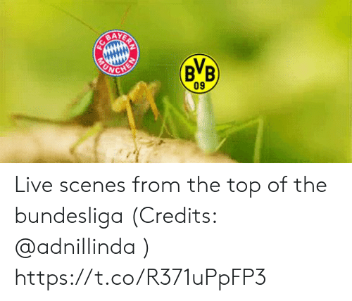 bundesliga: AY  BB  ONG  09 Live scenes from the top of the bundesliga (Credits: @adniIIinda )  https://t.co/R371uPpFP3