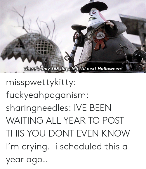 til: AYOR  There's only 365 days left til next Halloween! misspwettykitty:  fuckyeahpaganism:  sharingneedles: IVE BEEN WAITING ALL YEAR TO POST THIS YOU DONT EVEN KNOW I'm crying.  i scheduled this a year ago..