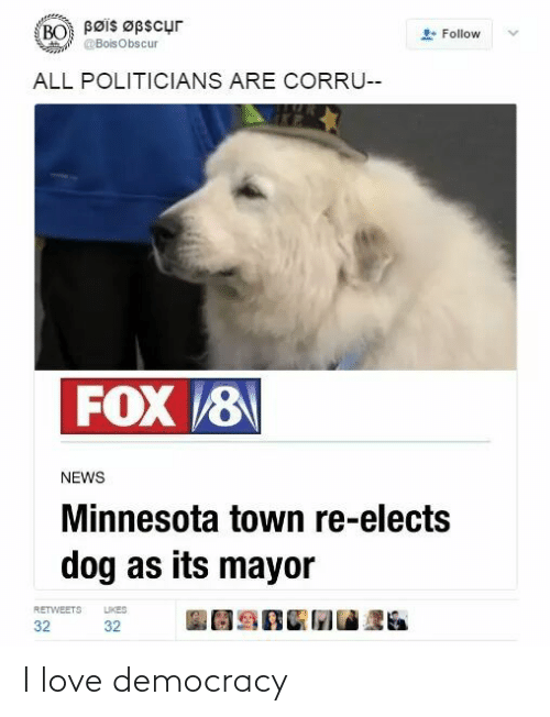 mayor: Bøis Øpscur  BO  Follow  @BoisObscur  ALL POLITICIANS ARE CORRU--  FOX 8  NEWS  Minnesota town re-elects  dog as its mayor  LIKES  RETWEETS  32  32 I love democracy