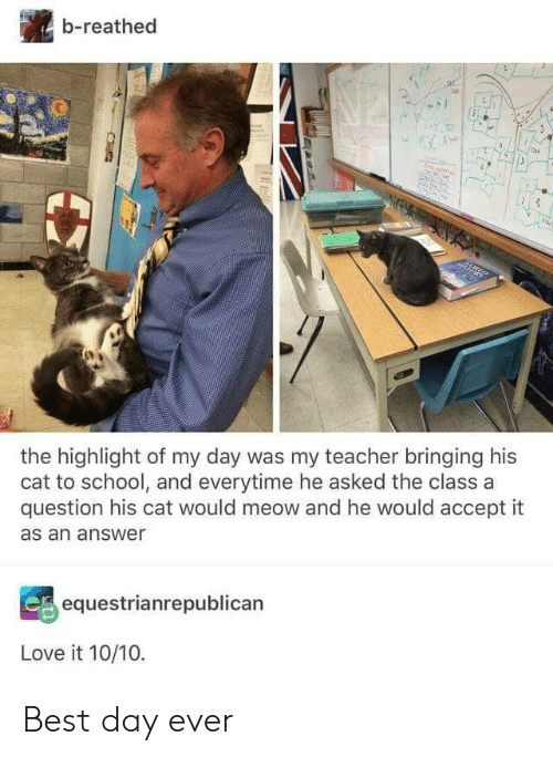 Love, School, and Teacher: b-reathed  the highlight of my day was my teacher bringing his  cat to school, and everytime he asked the class a  question his cat would meow and he would accept it  as an answer  equestrianrepublican  Love it 10/10. Best day ever