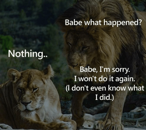 Do It Again, Sorry, and Did: Babe what happened?  Nothing...  Babe, I'm sorry  I won't do it again.  |(l don't even know what  I did.)