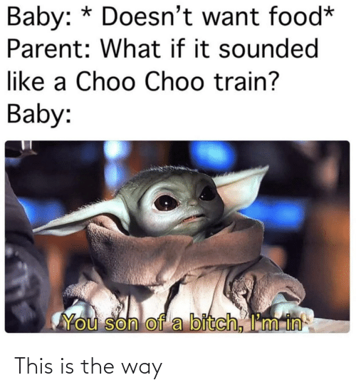 Son Of A: Baby: * Doesn't want food*  Parent: What if it sounded  like a Choo Choo train?  Baby:  You son of a bitch, I'm in This is the way