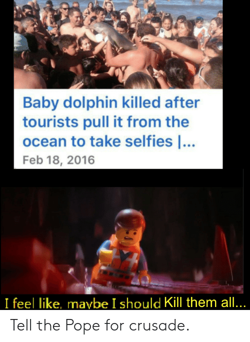 feb: Baby dolphin killed after  tourists pull it from the  ocean to take selfies ...  Feb 18, 2016  I feel like, maybe I should Kill them all... Tell the Pope for crusade.