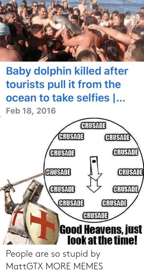 feb: Baby dolphin killed after  tourists pull it from the  ocean to take selfies ...  Feb 18, 2016  CRUSADE  CRUSADE  CRUSADE  CRUSADE  CRUSADE  CRUSADE  CRUSADE  CRUSADE  CRUSADE  CRUSADE  CRUSADE  CRUSADE  Good Heavens, just  look at the time! People are so stupid by MattGTX MORE MEMES