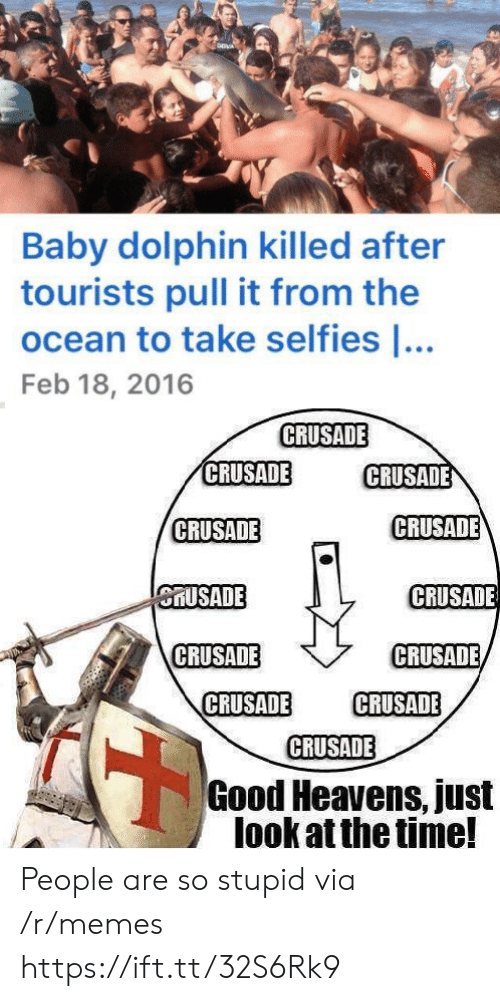 feb: Baby dolphin killed after  tourists pull it from the  ocean to take selfies ...  Feb 18, 2016  CRUSADE  CRUSADE  CRUSADE  CRUSADE  CRUSADE  CRUSADE  CRUSADE  CRUSADE  CRUSADE  CRUSADE  CRUSADE  CRUSADE  Good Heavens, just  look at the time! People are so stupid via /r/memes https://ift.tt/32S6Rk9