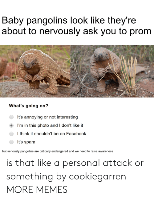 Nervously: Baby pangolins look like they're  about to nervously ask you to prom  What's going on?  It's annoying or not interesting  I'm in this photo and I don't like it  I think it shouldn't be on Facebook  It's spam  but seriously pangolins are critically endangered and we need to raise awareness is that like a personal attack or something by cookiegarren MORE MEMES