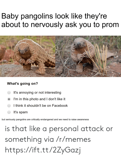 Nervously: Baby pangolins look like they're  about to nervously ask you to prom  What's going on?  It's annoying or not interesting  I'm in this photo and I don't like it  I think it shouldn't be on Facebook  It's spam  but seriously pangolins are critically endangered and we need to raise awareness is that like a personal attack or something via /r/memes https://ift.tt/2ZyGazj