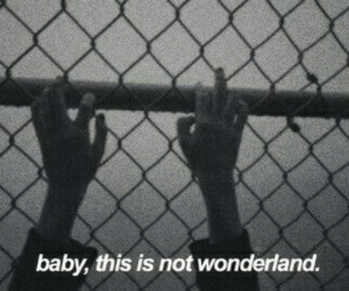 Baby, Wonderland, and This: baby, this is not wonderland.