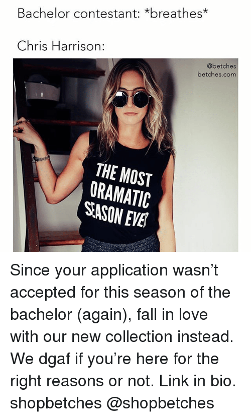 Fall, Love, and Bachelor: Bachelor contestant: *breathes*  Chris Harrison:  @betches  betches.com  THE MOST  ORAMATIC  SASON EVE Since your application wasn't accepted for this season of the bachelor (again), fall in love with our new collection instead. We dgaf if you're here for the right reasons or not. Link in bio. shopbetches @shopbetches