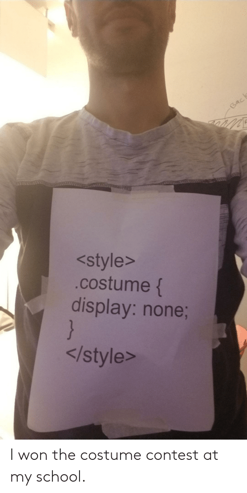 School, I Won, and Back: Back  <style>  .costume {  display: none;  }  </style> I won the costume contest at my school.