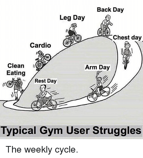 Legs Day: Back Day  Leg Day  Chest day  Cardio  Clean  Eating  Arm Day  Rest Day  Typical Gym User Struggles The weekly cycle.