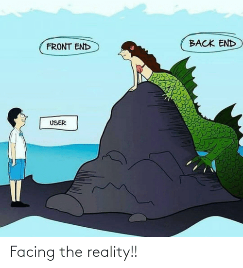 Reality, Back, and User: BACK END  FRONT END  USER Facing the reality!!