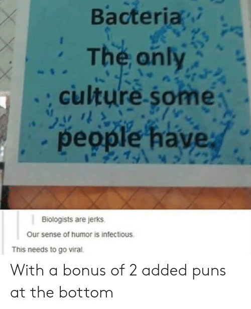 Puns, Culture, and Bacteria: Bacteria  The anly  culture some  people have  19  Biologists are jerks  Our sense of humor is infectious  This needs to go viral. With a bonus of 2 added puns at the bottom