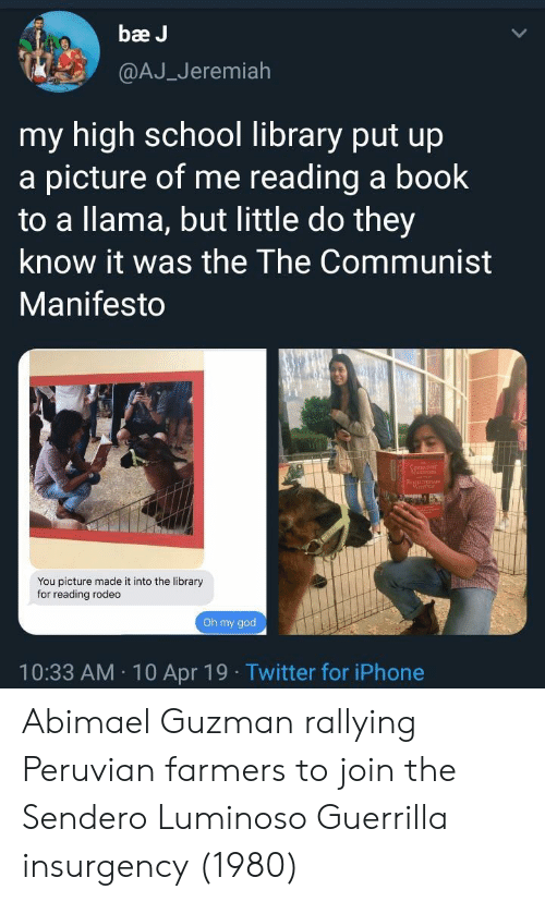 Communist: bae J  @AJ_Jeremiah  my high school library put up  a picture of me reading a book  to a llama, but little do they  know it was the The Communist  Manifesto  You picture made it into the library  for reading rodeo  Oh my goo  10:33 AM 10 Apr 19 Twitter for iPhone Abimael Guzman rallying Peruvian farmers to join the Sendero Luminoso Guerrilla insurgency (1980)