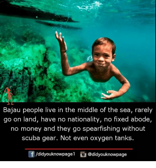 scuba: Bajau people live in the middle of the sea, rarely  go on land, have no nationality, no fixed abode,  no money and they go spearfishing without  scuba gear. Not even oxygen tanks  f/didyouknowpagel @didyouknowpage